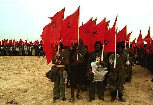 المسيرة الخضراء حدث تاريخي فتح المجال أمام عودة الصحراء بطرق سليمة