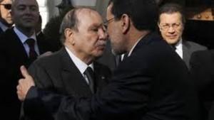 المغرب يمد يده مرة أخرى لجارته الجزائر،ماذا بعد؟