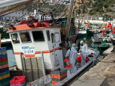 خلو ركاب مراكب الصيد الساحلي التي حلت بميناء  الحسيمـة من اعراض فيروس كورونا