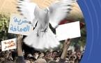 برنامج  مهرجان الحريات